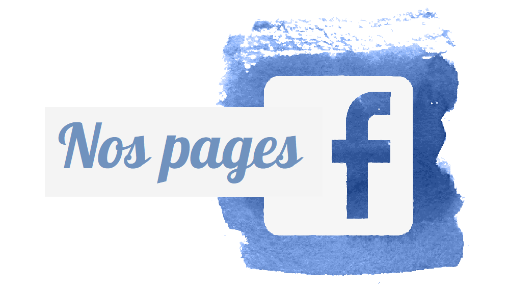 pages facebook wp